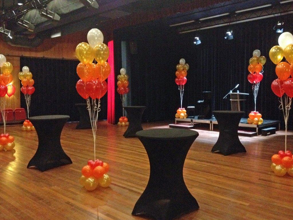 Ballonnen Noord Holland