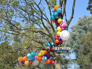 Organische ballonguirlande